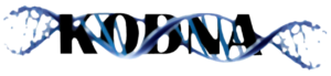 KODNA Network Logo